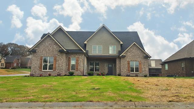1646 Inverness Dr, Maryville, TN 37801 (#1061778) :: Billy Houston Group
