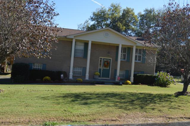 619 Pimlico Drive, Seymour, TN 37865 (#1061819) :: Shannon Foster Boline Group