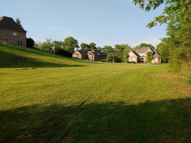 102 Masthead Drive, Clinton, TN 37716 (#1061858) :: Venture Real Estate Services, Inc.