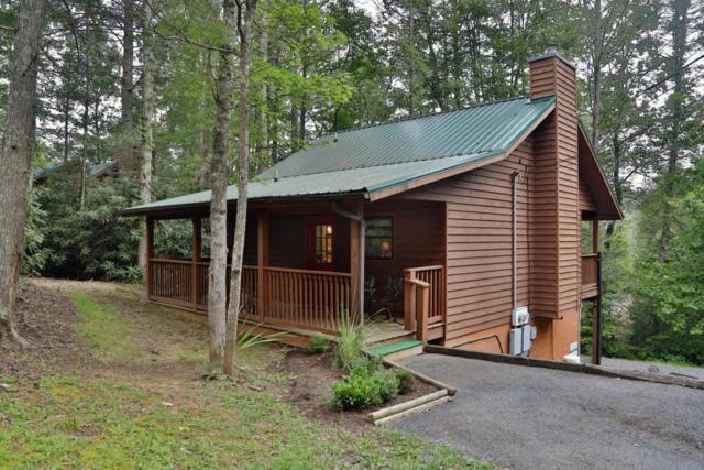531 Reba Lane, Pigeon Forge, TN 37862 (#1061997) :: Billy Houston Group