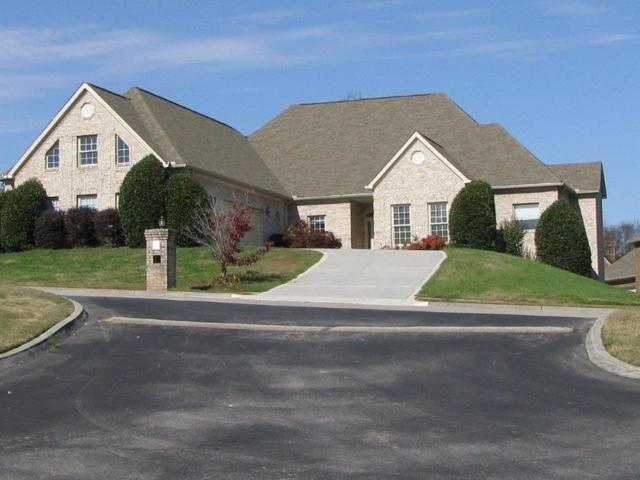 115 Deerfield Court, Lenoir City, TN 37772 (#1062029) :: Realty Executives Associates