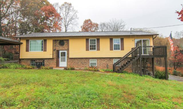 8422 San Marcos Drive, Knoxville, TN 37938 (#1062030) :: Billy Houston Group