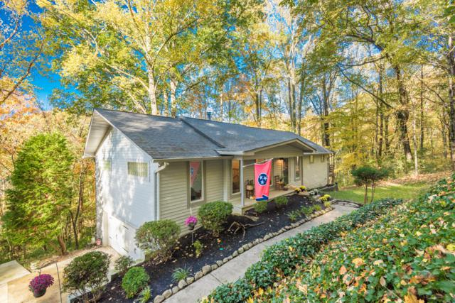 6604 Cochise Drive, Knoxville, TN 37918 (#1062066) :: Shannon Foster Boline Group