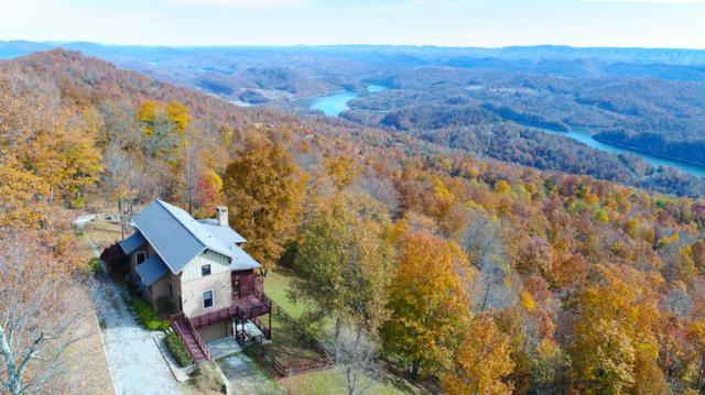 251 Nightingale Lane, New Tazewell, TN 37825 (#1062156) :: Shannon Foster Boline Group