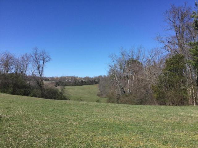 Old Hwy 33, New Tazewell, TN 37825 (#1062163) :: Shannon Foster Boline Group