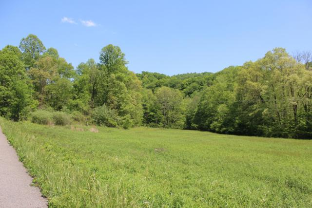 1910 Mabe Stanleytown Rd, Duffield, VA 24244 (#1062173) :: Shannon Foster Boline Group