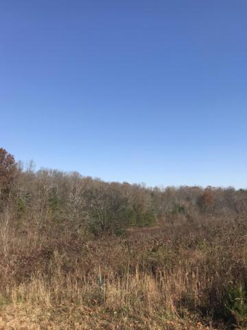 2881 Derby Chase Drive, Philadelphia, TN 37846 (#1062243) :: Realty Executives