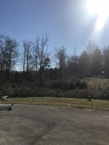 3141 Derby Chase Drive, Philadelphia, TN 37846 (#1062245) :: Realty Executives