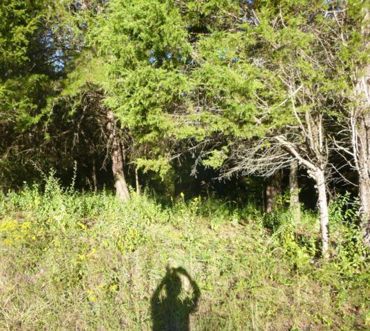 106 Inola Place, Loudon, TN 37774 (#1062280) :: Billy Houston Group