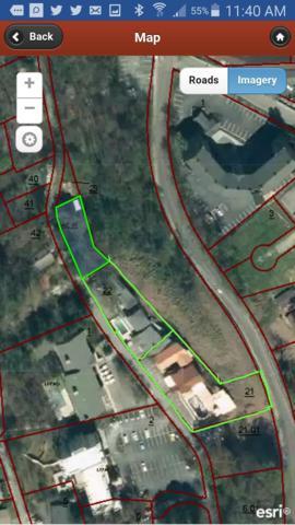 349 E Holly Ridge Rd, Gatlinburg, TN 37738 (#1062297) :: The Terrell Team