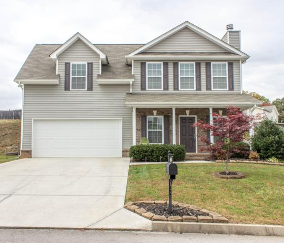 8519 Bowsong Lane, Powell, TN 37849 (#1062300) :: Billy Houston Group