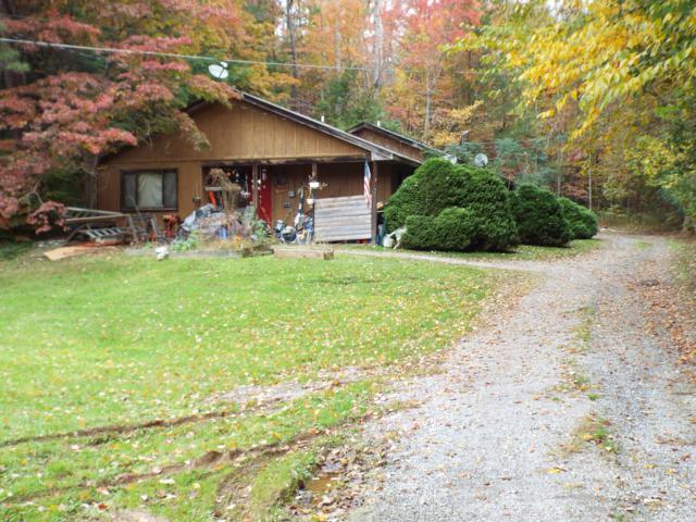 460 Buckhorn Road, Gatlinburg, TN 37738 (#1062373) :: SMOKY's Real Estate LLC
