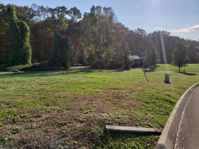 Lot 95 Cow Poke Lane, Rutledge, TN 37861 (#1062382) :: Billy Houston Group