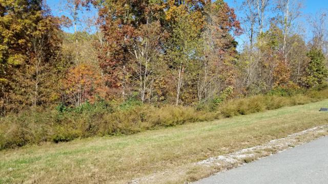 W Mountain Drive, Rockwood, TN 37854 (#1062391) :: Shannon Foster Boline Group