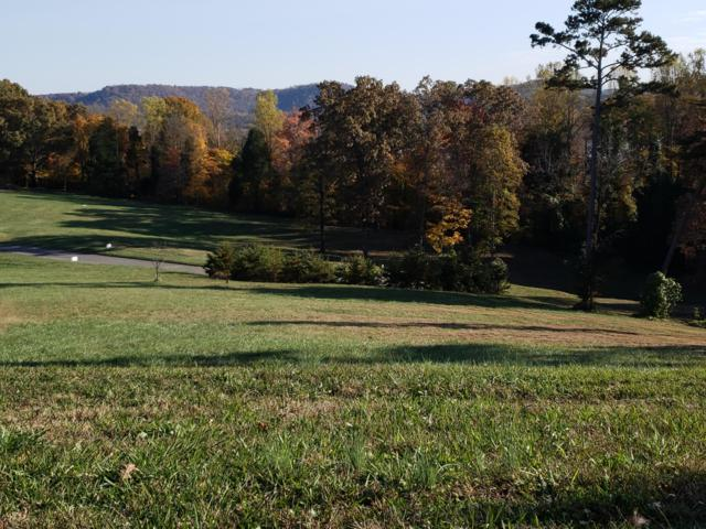 Lot 98 Cow Poke Lane, Rutledge, TN 37861 (#1062405) :: Billy Houston Group