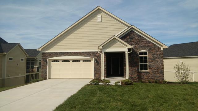 1007 Pryse Farm Blvd, Knoxville, TN 37934 (#1062406) :: SMOKY's Real Estate LLC