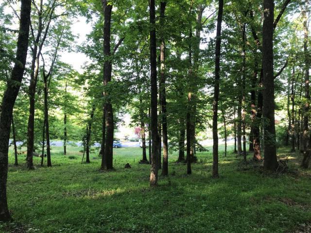 East Shore, Rockwood, TN 37854 (#1062423) :: CENTURY 21 Legacy