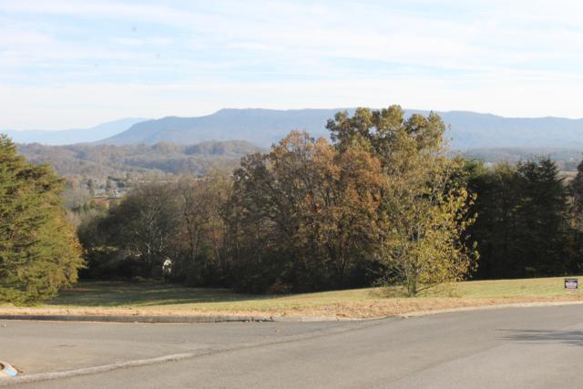 804 Bridle Court, Seymour, TN 37865 (#1062451) :: SMOKY's Real Estate LLC