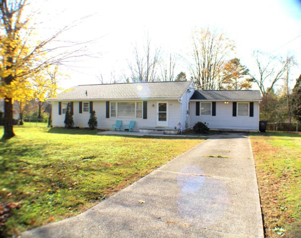 5609 Wil Loyd Rd, Knoxville, TN 37912 (#1062474) :: Billy Houston Group