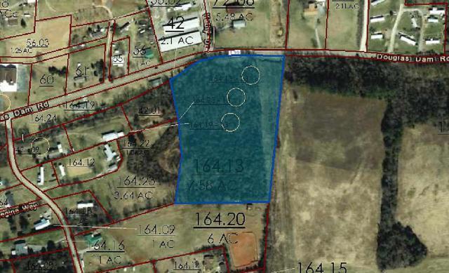 Douglas Dam Rd, Kodak, TN 37764 (#1062478) :: Billy Houston Group