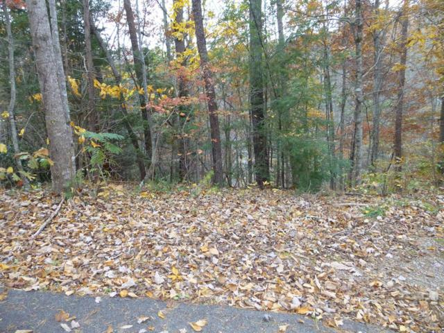 Lot 446 Iris Ct., Sevierville, TN 37876 (#1062503) :: SMOKY's Real Estate LLC