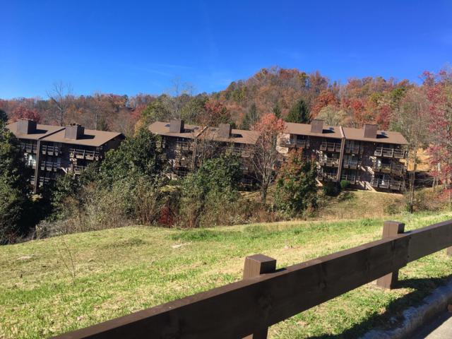 1081 Cove Rd Unit 913, Sevierville, TN 37876 (#1062526) :: The Terrell Team