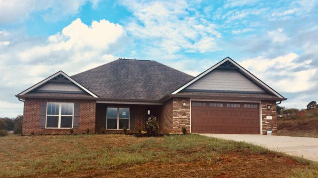 203 Montgomery Farms Drive, Friendsville, TN 37737 (#1062545) :: Billy Houston Group