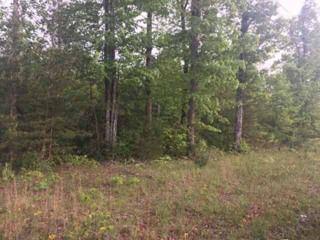 Dripping Springs Rd, Monterey, TN 38574 (#1062612) :: Billy Houston Group