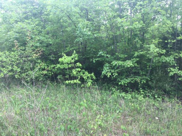 Dripping Springs Rd, Monterey, TN 38574 (#1062617) :: Billy Houston Group