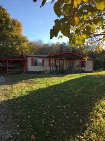 163 Powell Valley Shores Lane, Speedwell, TN 37870 (#1062629) :: Billy Houston Group