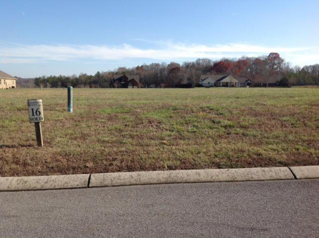 487 Cape Lookout  (Lot 16), Loudon, TN 37774 (#1062639) :: Shannon Foster Boline Group