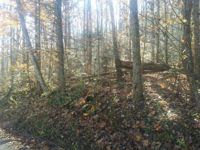 Old Cades Cove Rd, Townsend, TN 37882 (#1062660) :: Billy Houston Group