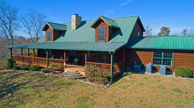 1041 Long Spur Tr, Dandridge, TN 37725 (#1062667) :: Billy Houston Group