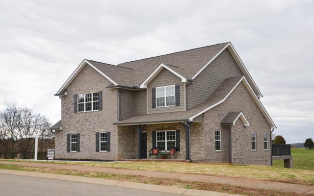1710 Cool Brook Court, Sevierville, TN 37876 (#1062689) :: Shannon Foster Boline Group
