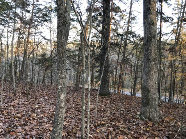 Hiwassee View Dr Lot #111, Jacksboro, TN 37757 (#1062793) :: Billy Houston Group