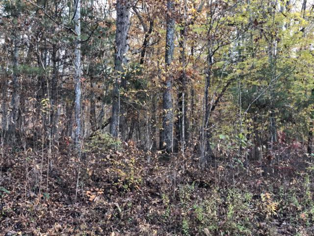 Hiwassee View Dr Lot #120, Jacksboro, TN 37757 (#1062801) :: Billy Houston Group