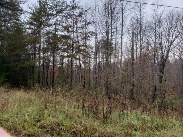Lot 12 Doyle Garrison Lane, Grandview, TN 37337 (#1062942) :: Shannon Foster Boline Group