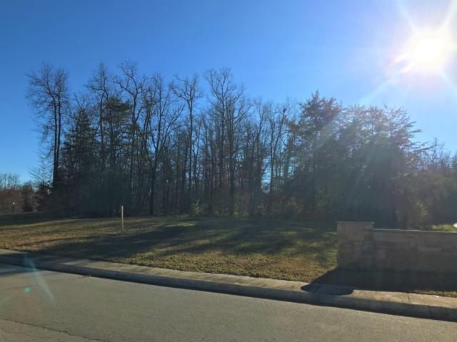 Lot 43 Riverview Drive, Crossville, TN 38555 (#1063030) :: Billy Houston Group