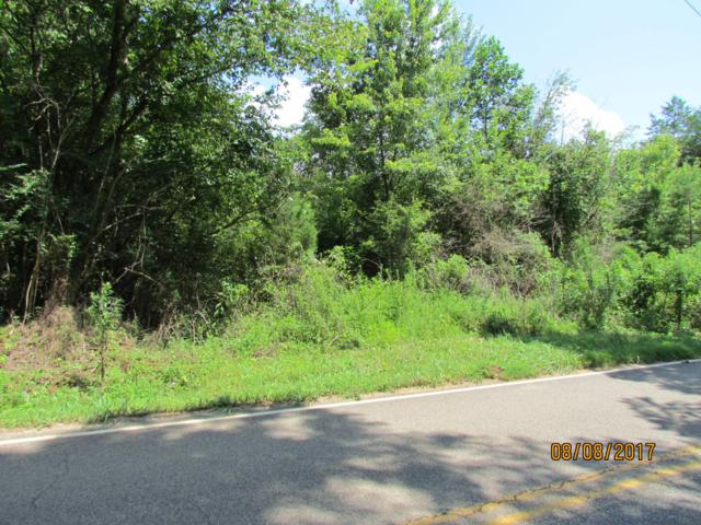 Little Dogwood Road Rd, Kingston, TN 37763 (#1063095) :: Shannon Foster Boline Group