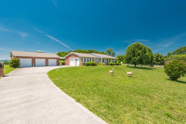 165 Cleveland Farm Rd, Sweetwater, TN 37874 (#1063102) :: Catrina Foster Group