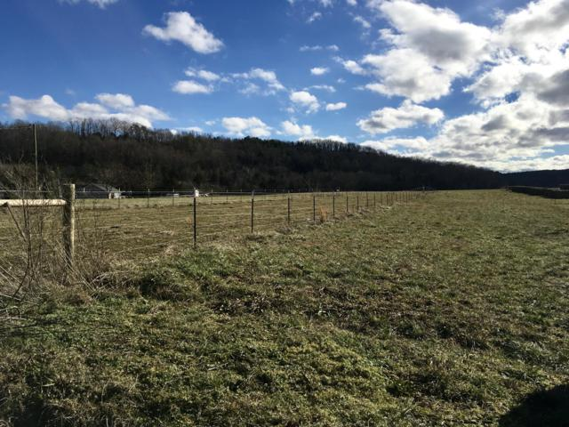 Co Rd 350 Lot #12, Sweetwater, TN 37874 (#1063160) :: Catrina Foster Group