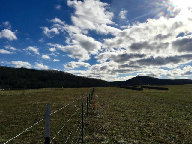 Co Rd 350 Lot #11, Sweetwater, TN 37874 (#1063161) :: Catrina Foster Group