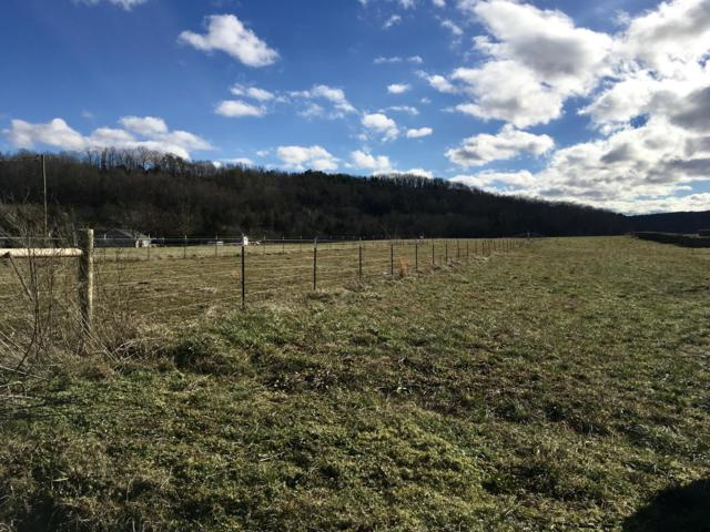 Co Rd 350 Lot #17, Sweetwater, TN 37874 (#1063164) :: Catrina Foster Group