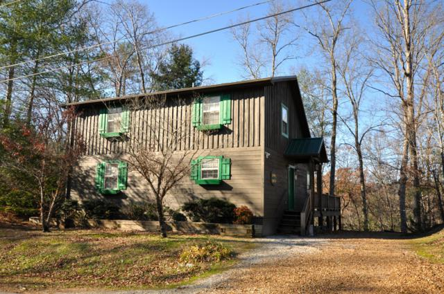 193 Cold Springs Trace, Townsend, TN 37882 (#1063242) :: Billy Houston Group