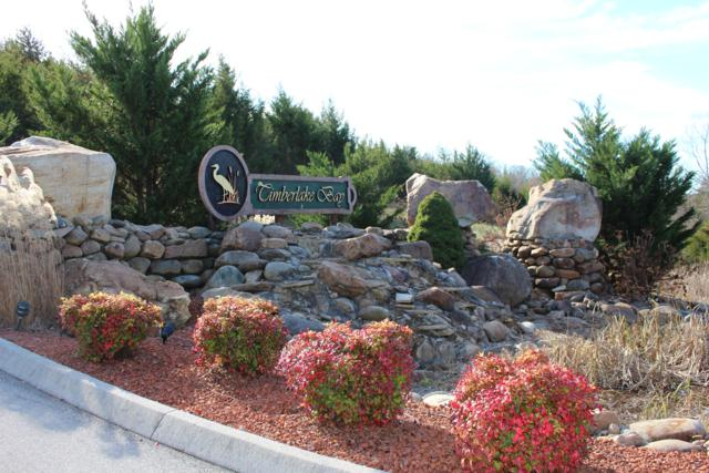 Lot 11 Sanctuary Shores Way, Sevierville, TN 37876 (#1063560) :: Billy Houston Group