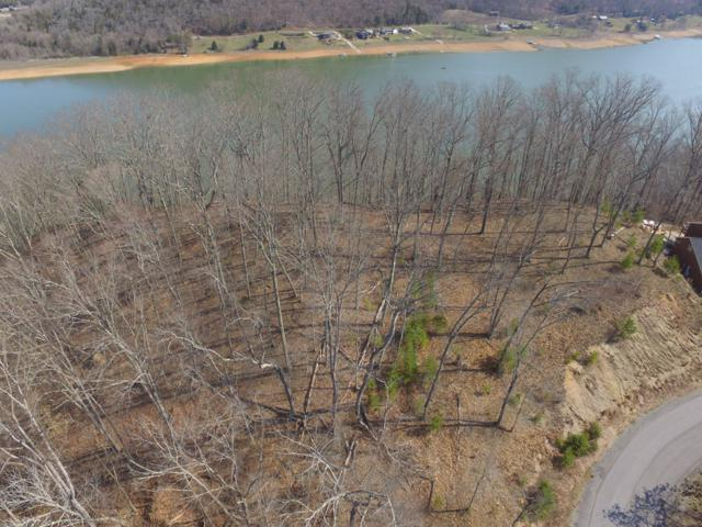 Lot 52 Hickory Knoll Circle, Whitesburg, TN 37891 (#1063632) :: Billy Houston Group