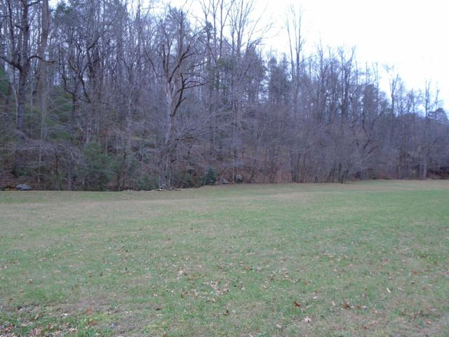 Black Mash Hollow Rd, Townsend, TN 37882 (#1063759) :: Shannon Foster Boline Group