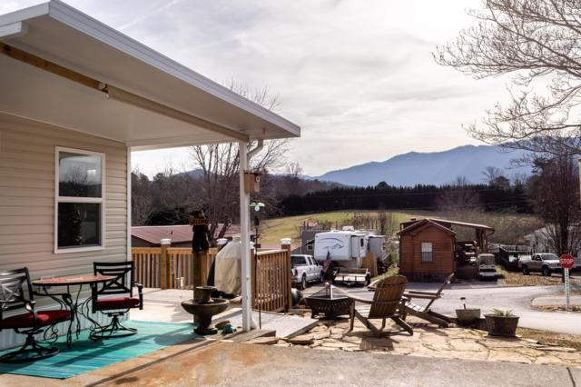 1143 Kinglet St, Townsend, TN 37882 (#1063888) :: Billy Houston Group