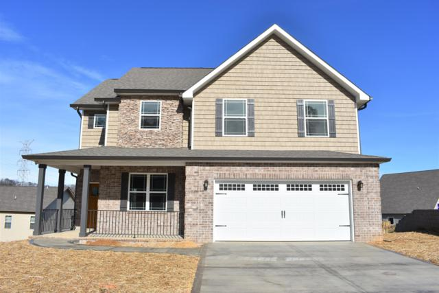 511 Tuxford Lane, Knoxville, TN 37912 (#1063896) :: Shannon Foster Boline Group