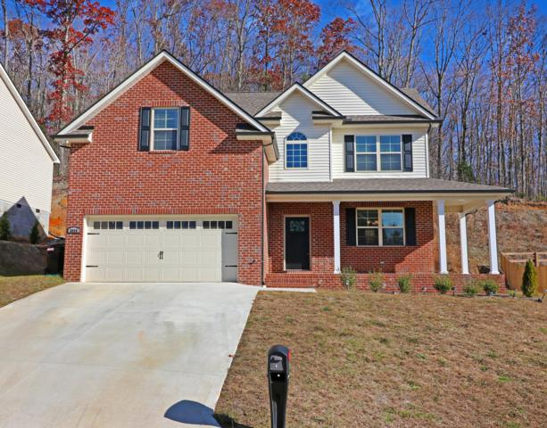 3056 Oakwood Hills Lane, Knoxville, TN 37931 (#1063912) :: Billy Houston Group